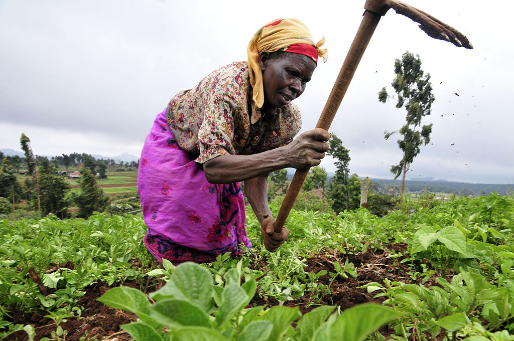 Kenya launches 10-year Climate Smart Agriculture Implementation Framework