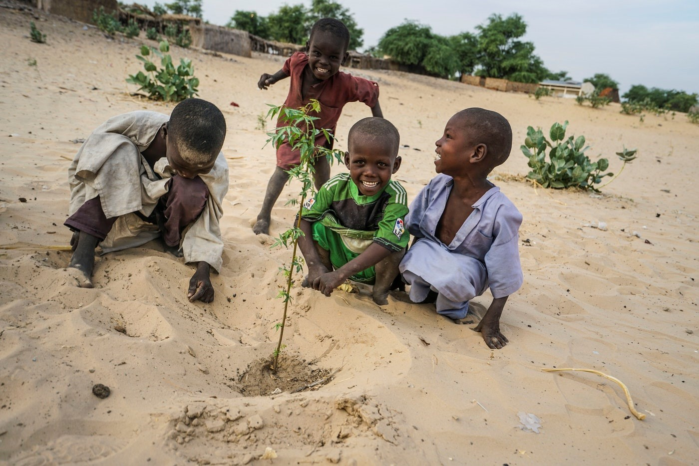 UNDP projects work to prevent further deterioration of Lake Chad