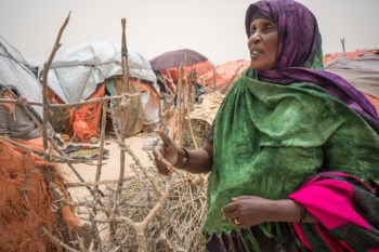 Co-ordination is necessary to tackle Somalian drought crisis